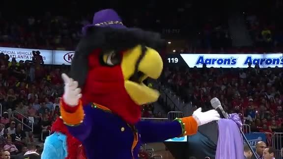 Harry The Hawk Gives Tribute To Prince